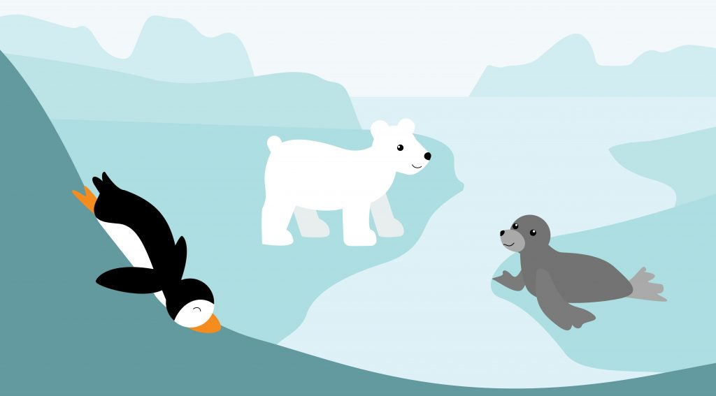 Arctic Package Illustration