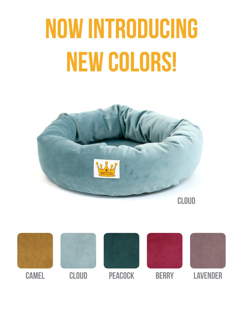 Dog Bed Announcement