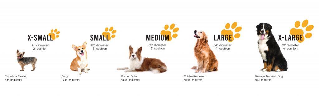 Dog Bed Sizing Chart