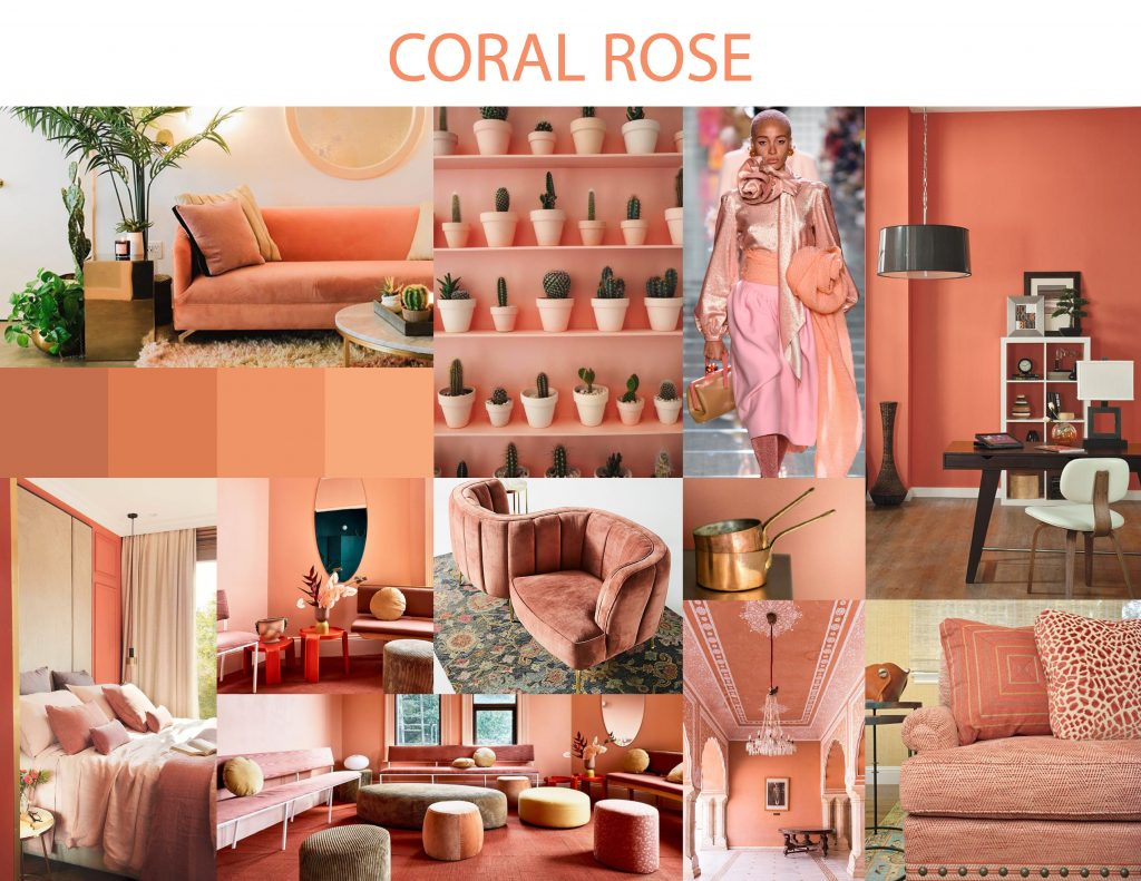 Color Trends Booklet